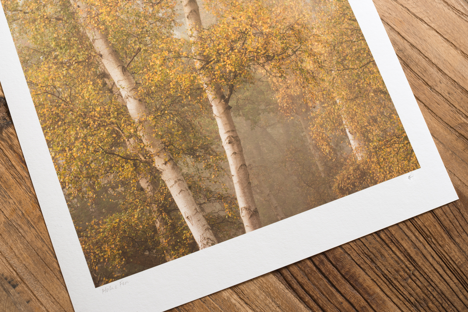 Photographic Prints